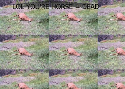 LOL YOU'RE HORSE = DEAD