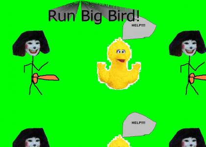 RUN BIG BIRD