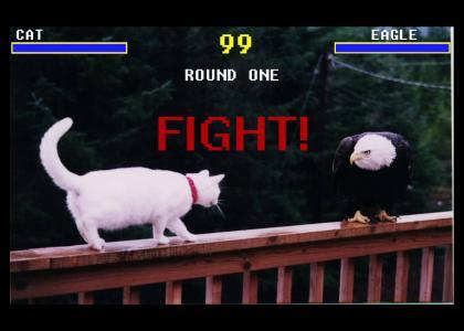 Animal Mortal Kombat