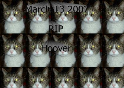 Ill miss you hoover