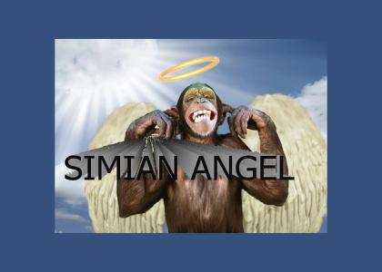 Simian Angel