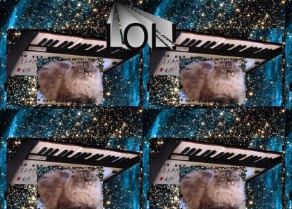 YTDNM: Keyboardonacatinspace