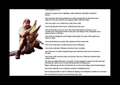 Steve Irwin: A man's man.