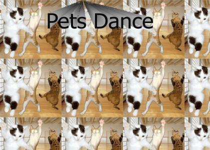 Pets Dance
