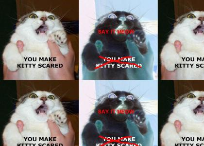 you make kitty scared (say it meow)