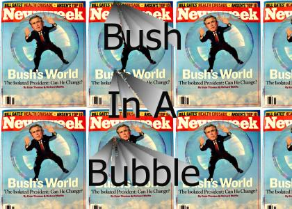 Bush In A Bubble
