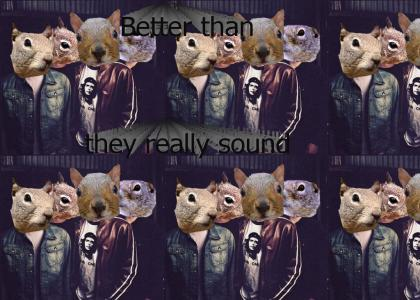 Nickelback Squirrels