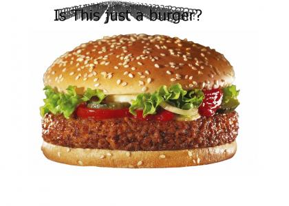Is it just a burger?