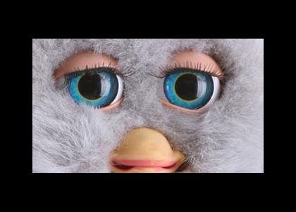 Furby Stares into YOUR Soul!