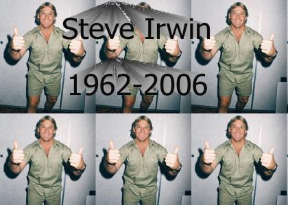 RIP Steve Irwin