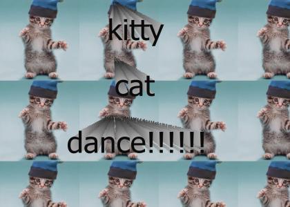 dancin kitty