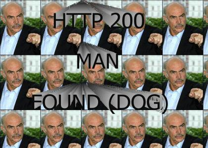 HTTP 200 MAN FOUND SUCCESSFULLY (DOG)