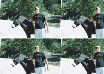 Howie's little pony