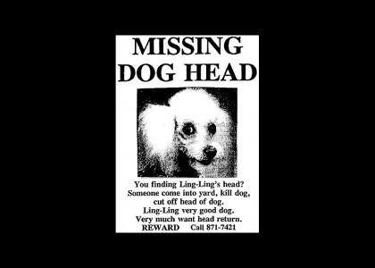 MISSING DOG HEAD