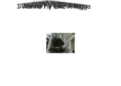 I Wanna Fly Like A Nigga