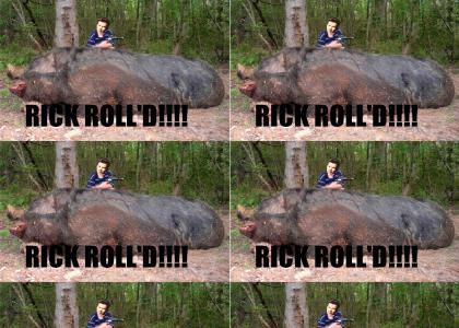Hog Gets Rolled!