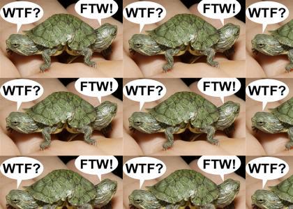 WTurtleF!?
