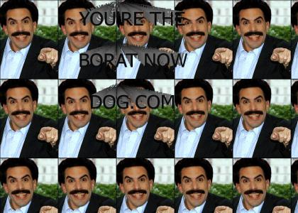 You're the Borat now dog!