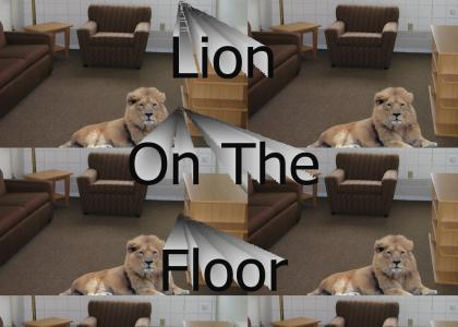 Lion On The Floor
