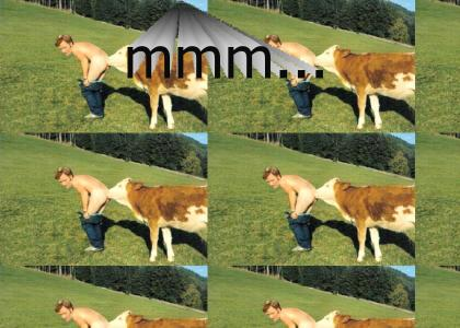 Conan Gets Molested By a Cow
