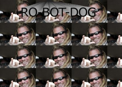 The Real Robot Dog
