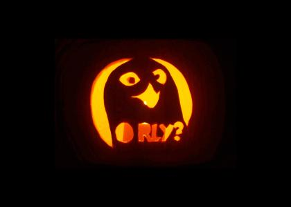 Pumpkins, O RLY?