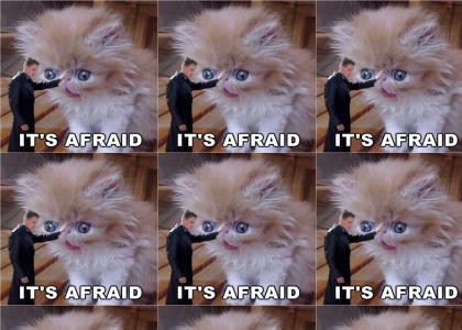 It's Afraid (Starship Troopers)