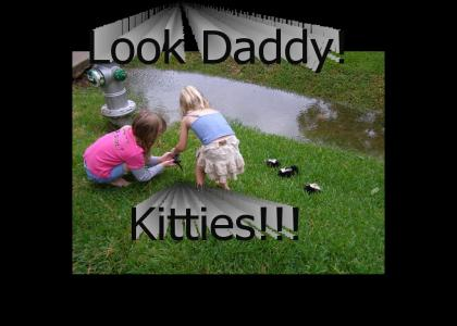Look Daddy!  Kitties!