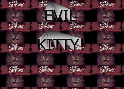 EVIL KITTY FROM PET SEMATARY!