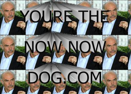 You're the now now dog.com