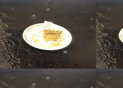 Someone left the cake out in the rain!!