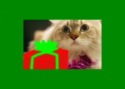 SHOCKING CHRISTMAS