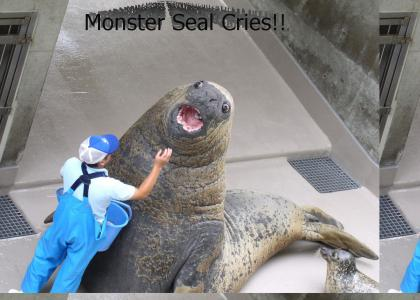 The Seal Keeper Had One Weakness...