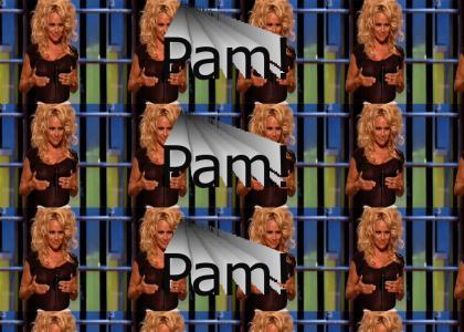 Pamela anderson shakes em'