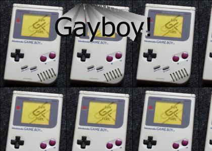 Gayboy
