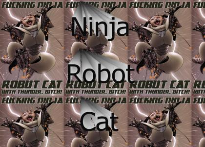 Ninja Robot Cat, now with Thunder, Bitch
