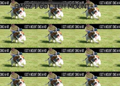OMG LVL 40 MOUNT