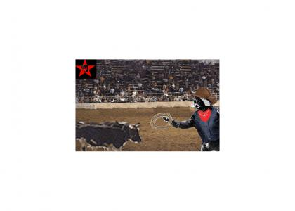 Ugly Luke Fails At Rodeo