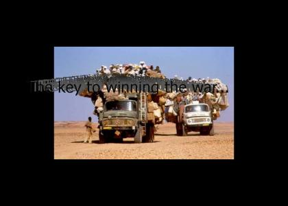 taliban cozy transport