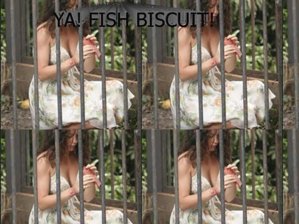 FishBiscuitlost