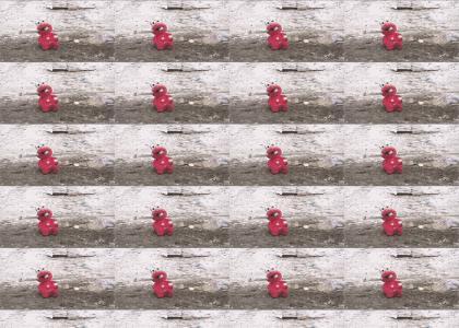 Elmo Dies in the line of fire