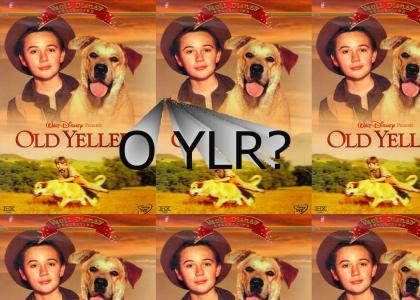 O YLR?