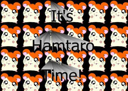 It's Hamtaro Time!