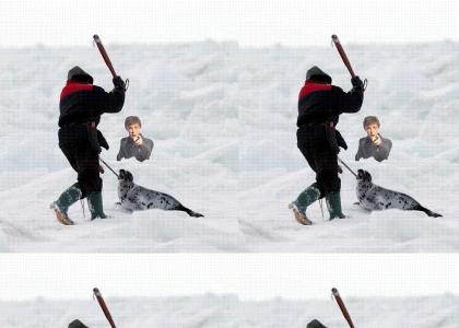 Paul McCartney says NO to seal hunting....