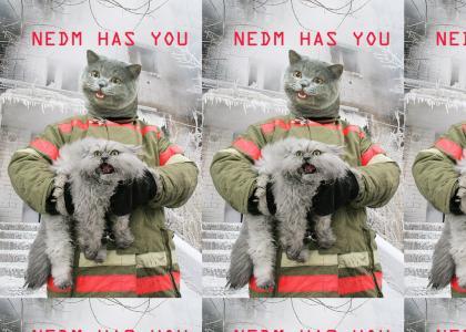 NEDM HAS YOU