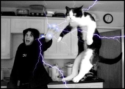 Force Lightning Cats!