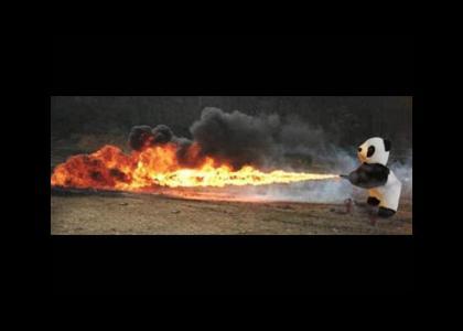 Flaming Panda