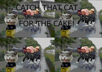 CATCH THAT CAT FOR THE CAKE!