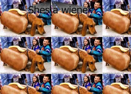 She's A Wiener