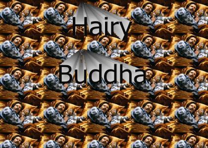 Hairy-Buddha